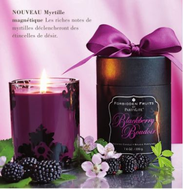Petite annonce 112538 : Devenez conseiller(�re) PartyLite (Bougies parfum�es, acc�ssores de d�coration)