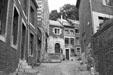 Rue Voliere